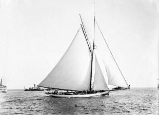 1886 a New York vince Mayflower